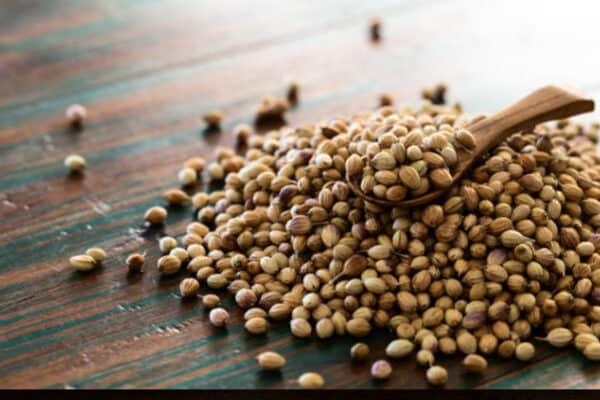 Buy Coriander Seeds Online