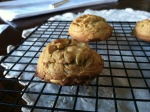 Sweet Pumpkin Cookies